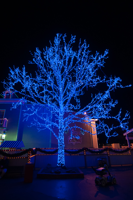 Christmas Decorations In Pigeon Forge Tn : Christmas lights at dollywood decorating