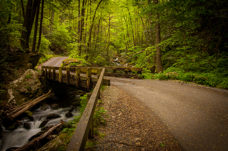 Banakas photography for Roaring fork smoky mountains